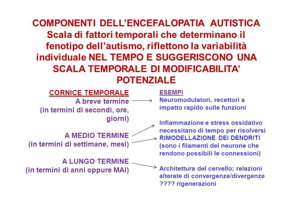 COMPONENTI DELLENCEFALOPATIA AUTISTICA Scala di fattori temporali che determinano il fenotipo dellautismo, riflettono la variabilità individuale NEL T