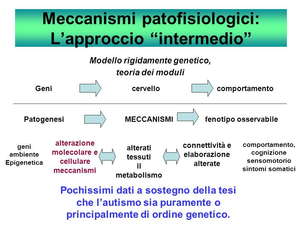 Meccanismi patofisiologici: Lapproccio intermedio Modello rigidamente genetico, teoria dei moduli Geni cervello comportamento Patogenesi MECCANISMI fe