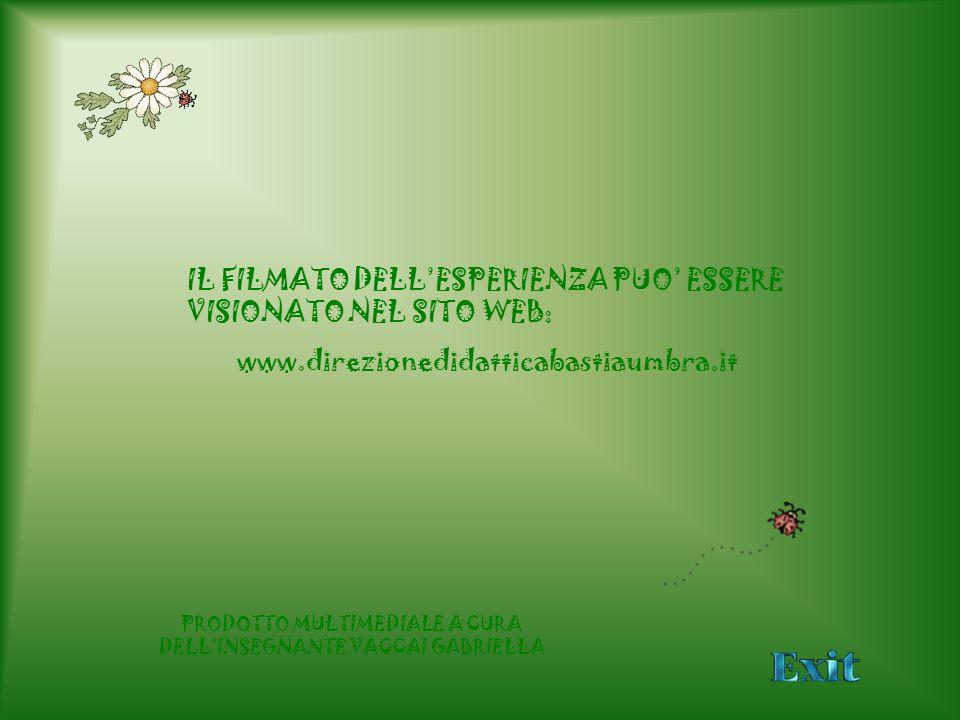 IL FILMATO DELLESPERIENZA PUO ESSERE VISIONATO NEL SITO WEB: www.direzionedidatticabastiaumbra.it PRODOTTO MULTIMEDIALE A CURA DELLINSEGNANTE VACCAI G