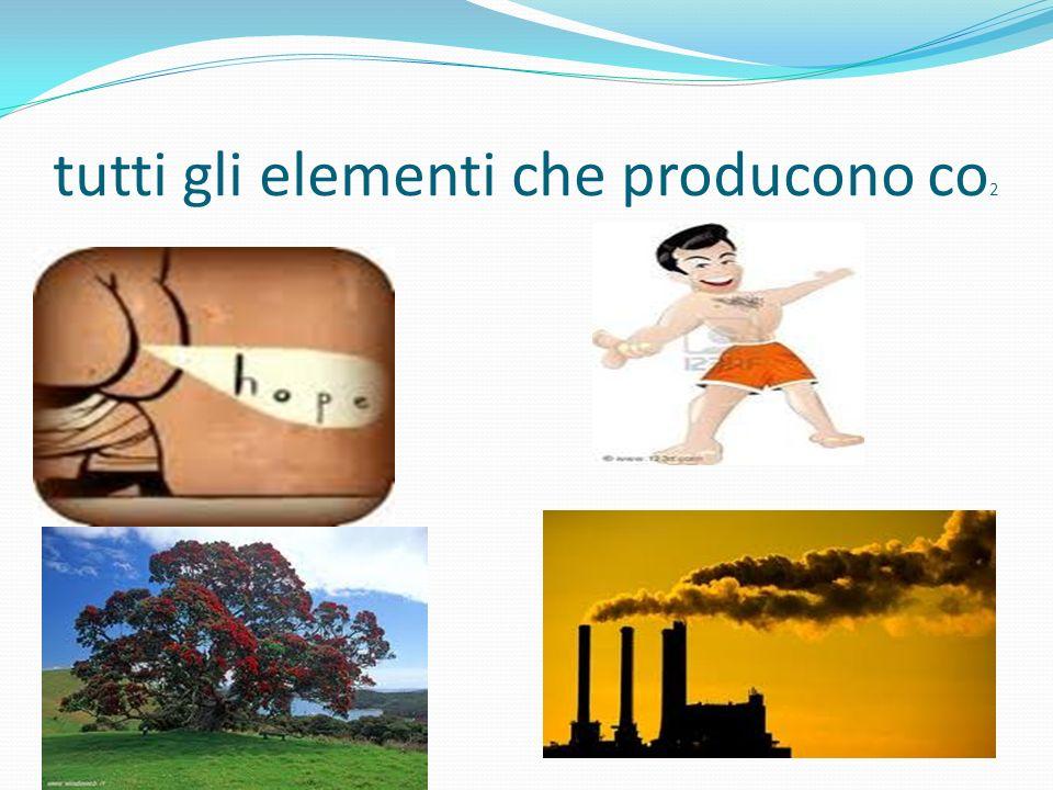 Il ciclo a parole Il ciclo della didascalia di prima dice che un sacco di cose producono CO 2 : i gas intestinali degli erbivori le ciminiere delle fa