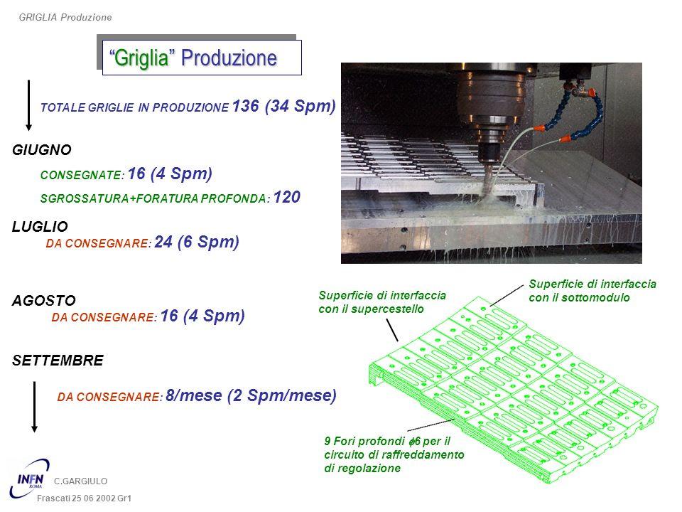 Griglia ProduzioneGriglia Produzione GRIGLIA Produzione C.GARGIULO Frascati 25 06 2002 Gr1 Superficie di interfaccia con il sottomodulo 9 Fori profond
