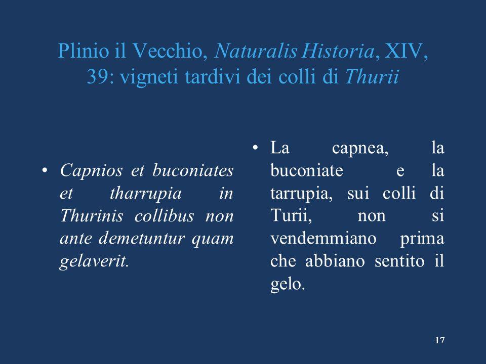 17 Plinio il Vecchio, Naturalis Historia, XIV, 39: vigneti tardivi dei colli di Thurii Capnios et buconiates et tharrupia in Thurinis collibus non ante demetuntur quam gelaverit.
