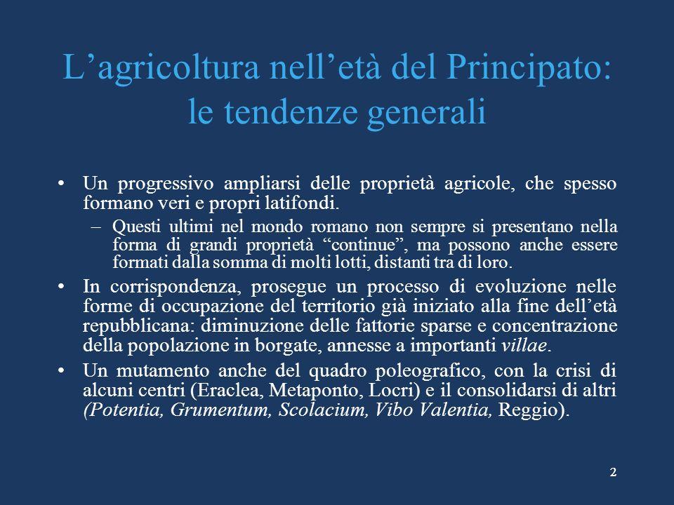 22 Lagricoltura nelletà del Principato: le tendenze generali Un progressivo ampliarsi delle proprietà agricole, che spesso formano veri e propri latifondi.
