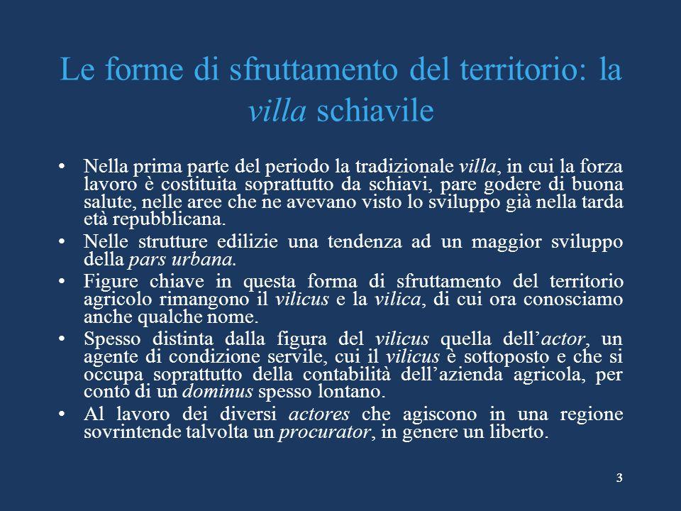 14 Le coltivazioni: i vigneti I riferimenti delle fonti letterarie: –Strabone, Geografia, VI, 1, 14: le qualità dei vini di Lagaria e di Thurii.