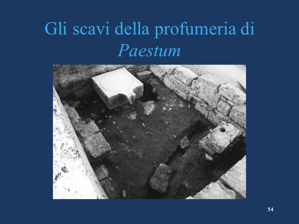 54 Gli scavi della profumeria di Paestum