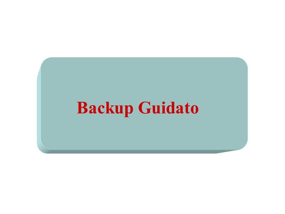 Backup Guidato