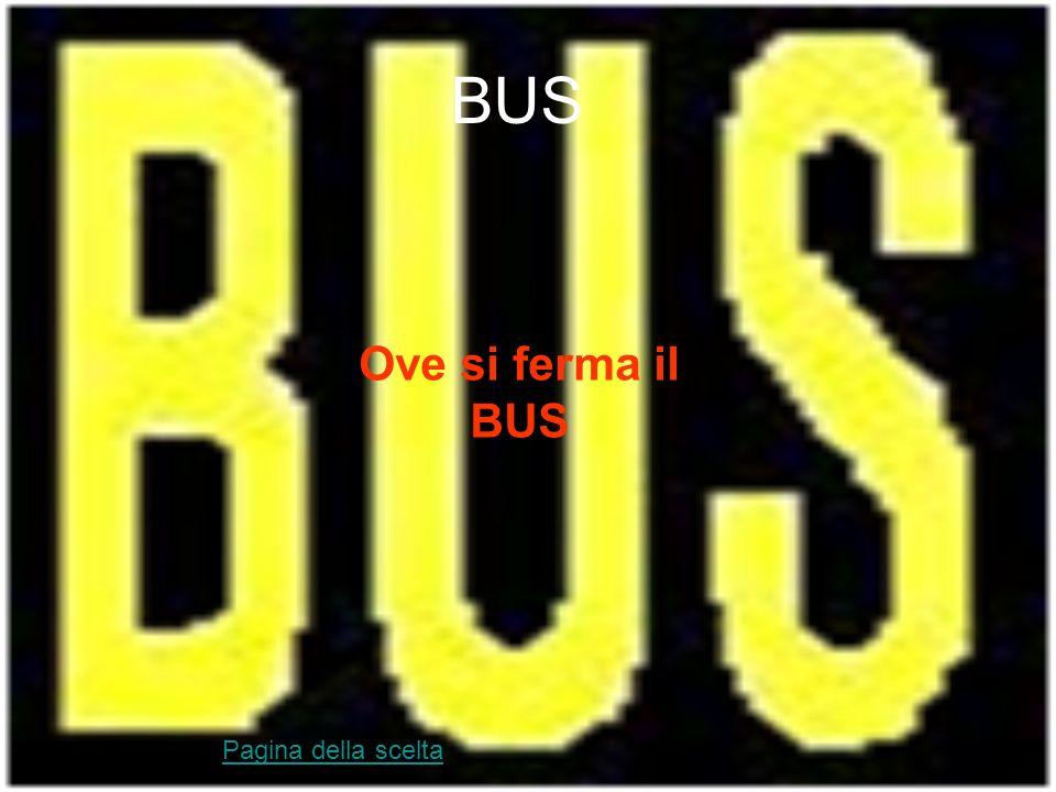 Linee gialle Delimitano aree riservate: parcheggi per invalidi, mezzi di soccorso, taxi Pagina della scelta