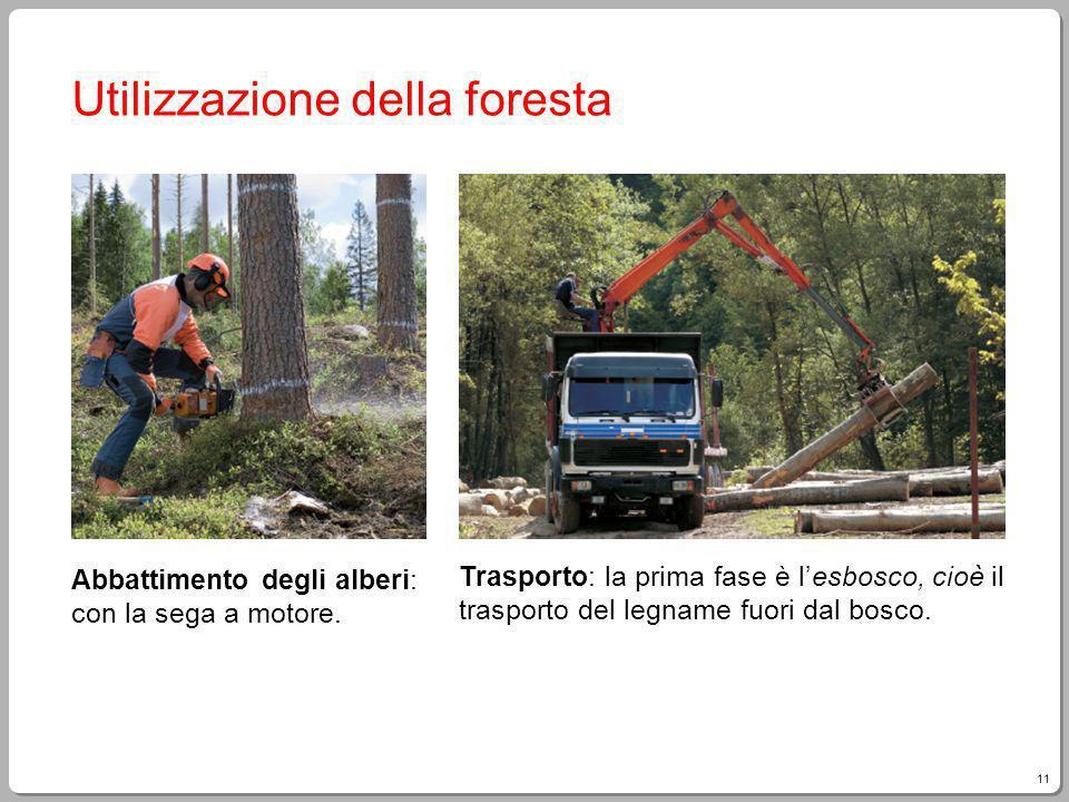 11 Giampietro Paci, Fare Tecnologia Utilizzazione della foresta Abbattimento degli alberi: con la sega a motore. Trasporto: la prima fase è lesbosco,