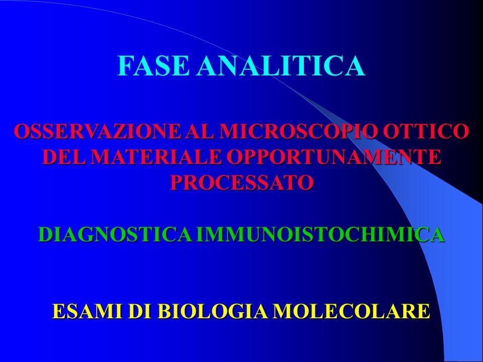FASE ANALITICA OSSERVAZIONE AL MICROSCOPIO OTTICO DEL MATERIALE OPPORTUNAMENTE PROCESSATO DIAGNOSTICA IMMUNOISTOCHIMICA ESAMI DI BIOLOGIA MOLECOLARE