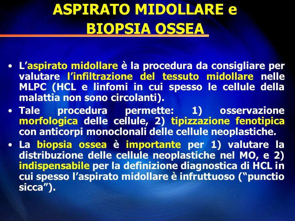 ASPIRATO MIDOLLARE e BIOPSIA OSSEA Laspirato midollare è la procedura da consigliare per valutare linfiltrazione del tessuto midollare nelle MLPC (HCL