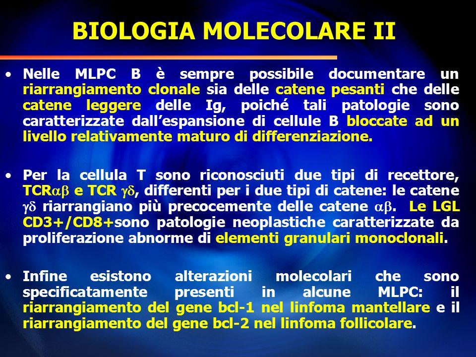 BIOLOGIA MOLECOLARE II Nelle MLPC B è sempre possibile documentare un riarrangiamento clonale sia delle catene pesanti che delle catene leggere delle