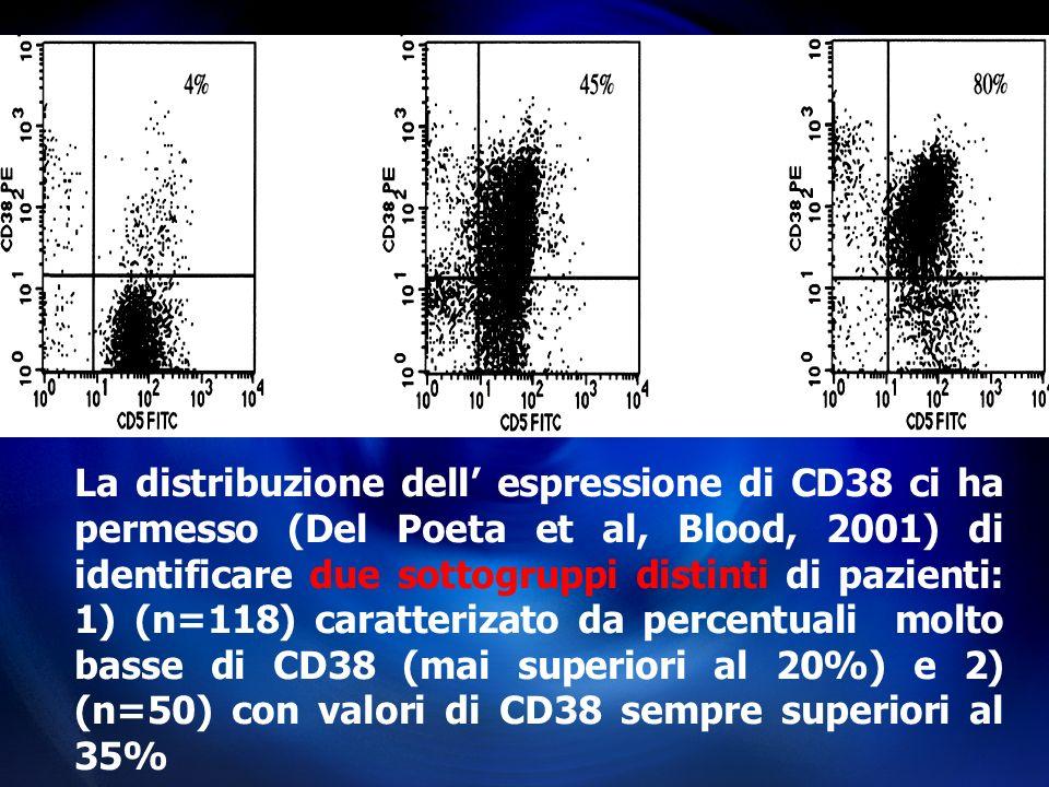 La distribuzione dell espressione di CD38 ci ha permesso (Del Poeta et al, Blood, 2001) di identificare due sottogruppi distinti di pazienti: 1) (n=11