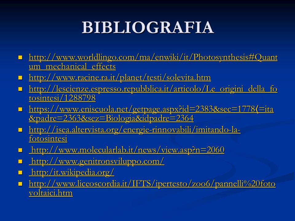 BIBLIOGRAFIA http://www.worldlingo.com/ma/enwiki/it/Photosynthesis#Quant um_mechanical_effects http://www.worldlingo.com/ma/enwiki/it/Photosynthesis#Q