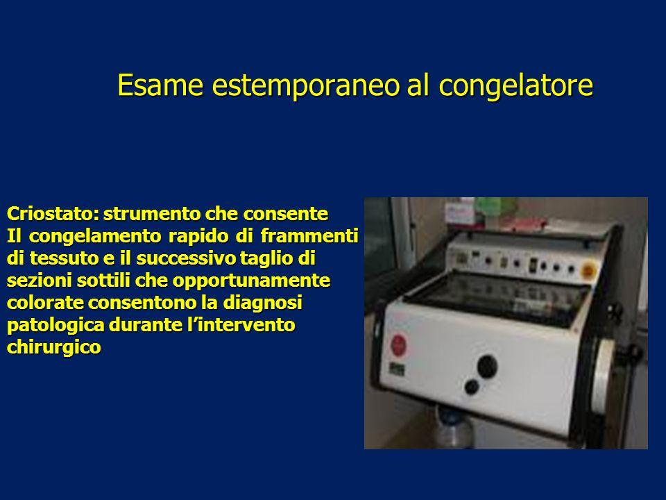 Esame estemporaneo al congelatore Criostato: strumento che consente Il congelamento rapido di frammenti di tessuto e il successivo taglio di sezioni s