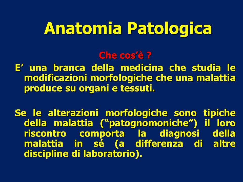 Che cosè ? E una branca della medicina che studia le modificazioni morfologiche che una malattia produce su organi e tessuti. Se le alterazioni morfol