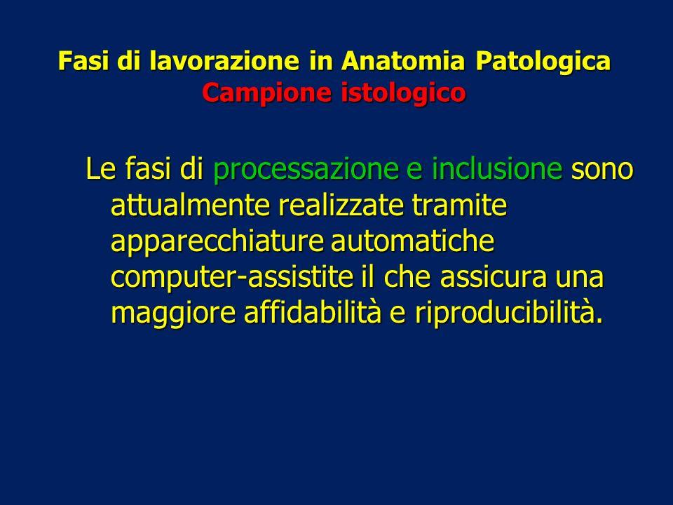 Fasi di lavorazione in Anatomia Patologica Campione istologico Le fasi di processazione e inclusione sono attualmente realizzate tramite apparecchiatu