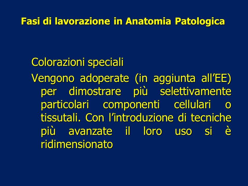 Fasi di lavorazione in Anatomia Patologica Colorazioni speciali Vengono adoperate (in aggiunta allEE) per dimostrare più selettivamente particolari co