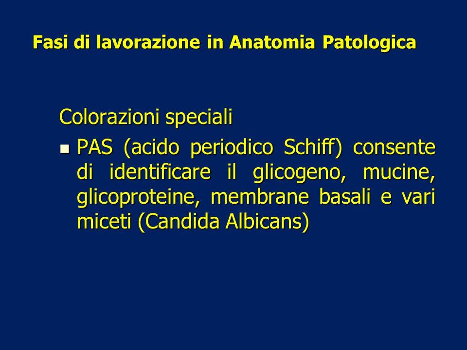 Fasi di lavorazione in Anatomia Patologica Colorazioni speciali PAS (acido periodico Schiff) consente di identificare il glicogeno, mucine, glicoprote