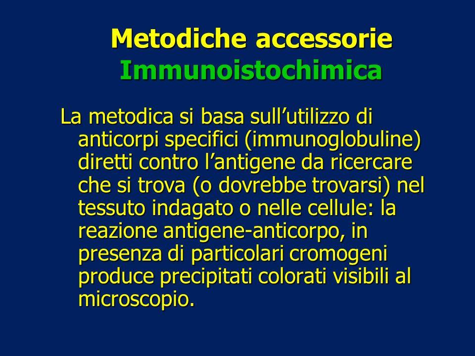 Metodiche accessorie Immunoistochimica La metodica si basa sullutilizzo di anticorpi specifici (immunoglobuline) diretti contro lantigene da ricercare