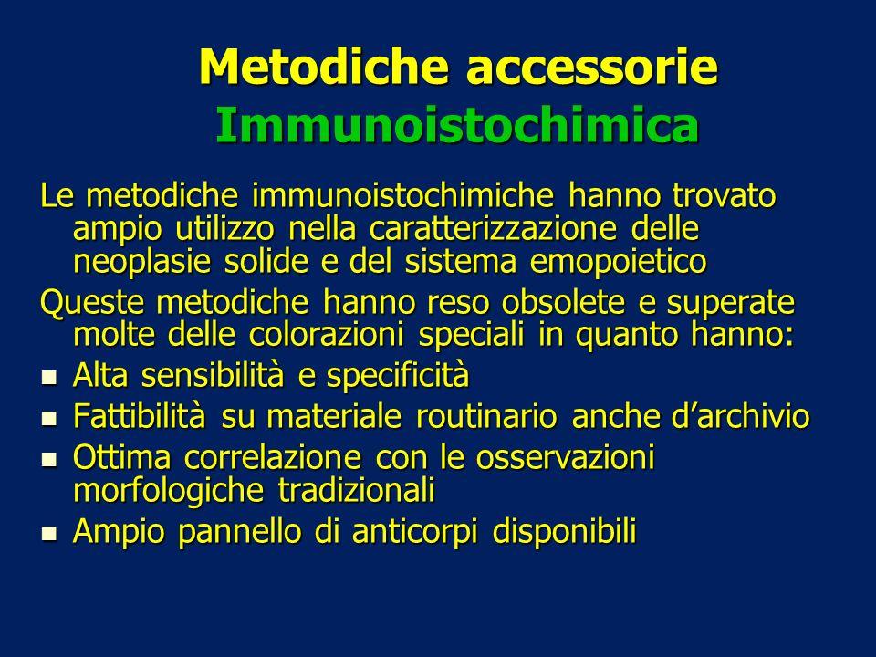 Metodiche accessorie Immunoistochimica Le metodiche immunoistochimiche hanno trovato ampio utilizzo nella caratterizzazione delle neoplasie solide e d