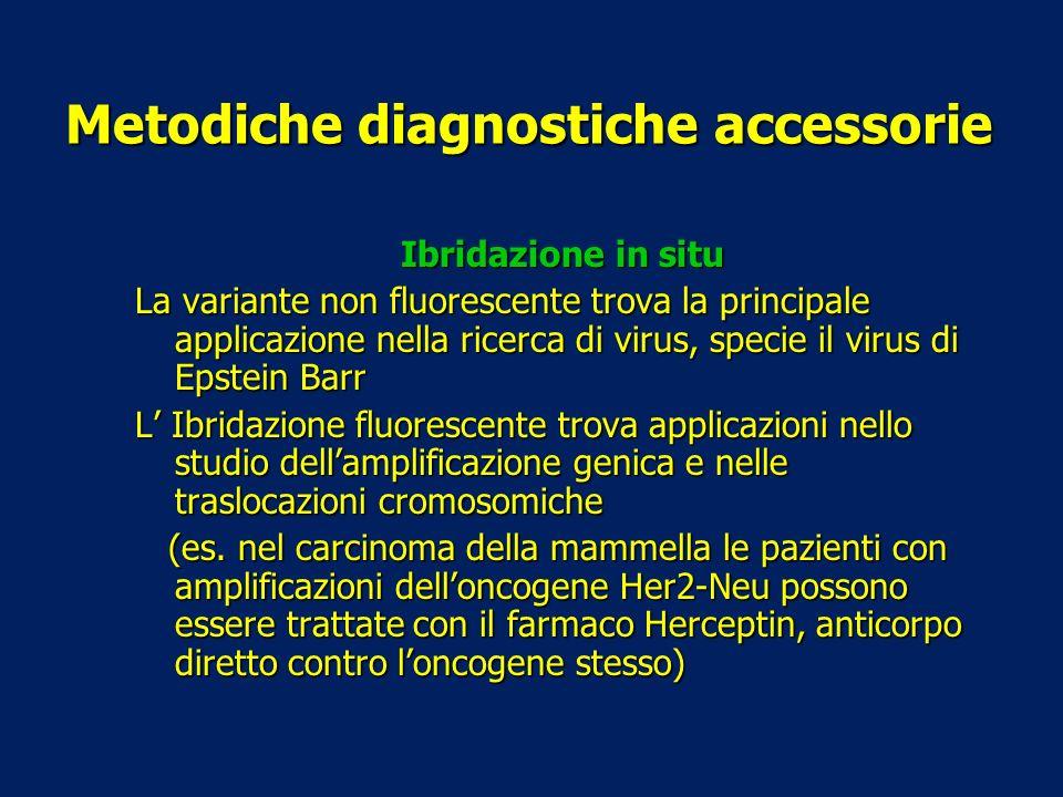 Metodiche diagnostiche accessorie Ibridazione in situ La variante non fluorescente trova la principale applicazione nella ricerca di virus, specie il