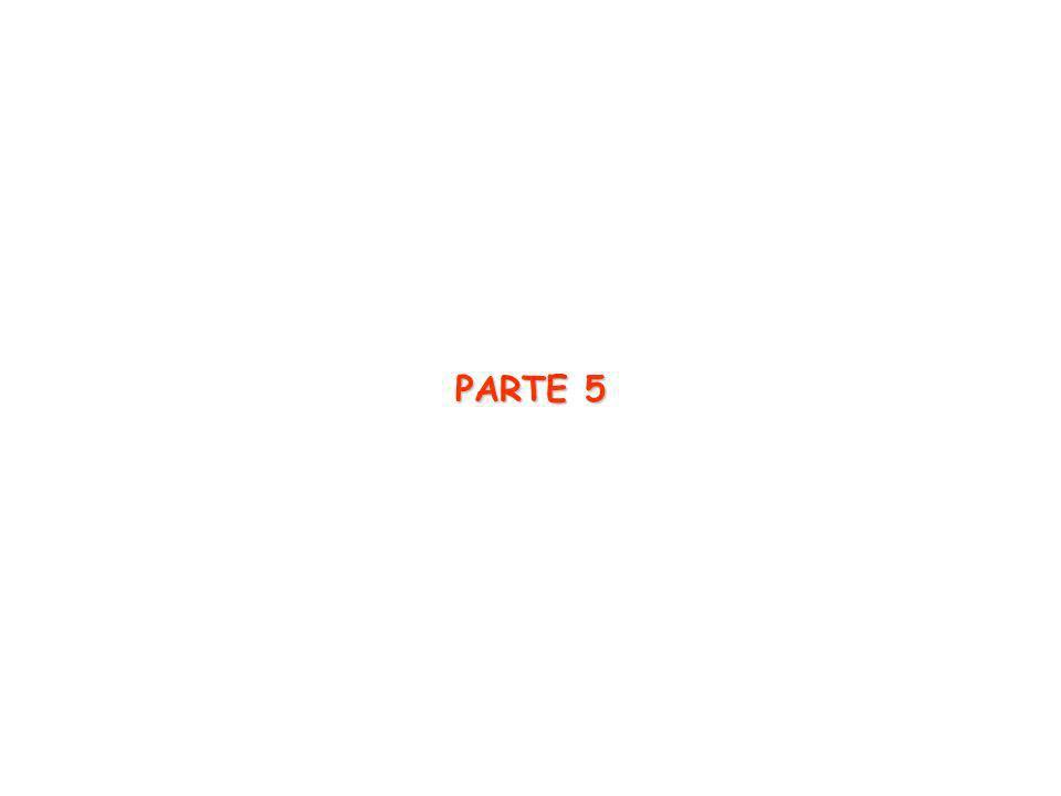PARTE 5