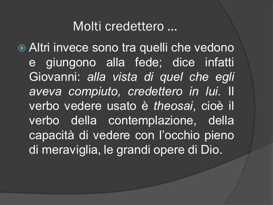 Molti credettero … Altri invece sono tra quelli che vedono e giungono alla fede; dice infatti Giovanni: alla vista di quel che egli aveva compiuto, cr