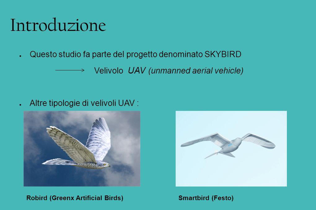 Specifiche: Biomimetico Forma di riferimento: gabbiano V = 5 ~ 20 m/s Apertura alare < 2 m M circa 1 Kg Deve poter essere lanciato a mano Obiettivo di questa tesi: sviluppare una forma della coda, con ali principali già sviluppate, perché il velivolo possa considerarsi stabile staticamente.
