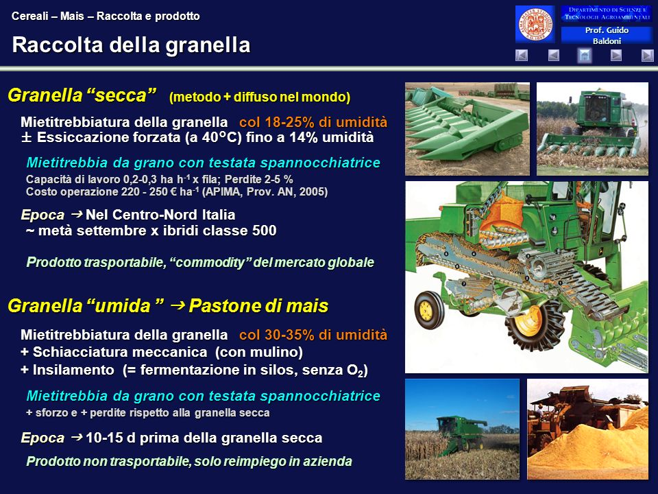 Prof. Guido Baldoni Prof. Guido Baldoni Raccolta della granella Granella secca (metodo + diffuso nel mondo) Mietitrebbiatura della granellacol 18-25%