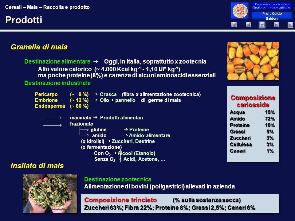 Prof. Guido Baldoni Prof. Guido Baldoni Destinazione zootecnica Alimentazione di bovini (poligastrici) allevati in azienda Prodotti Granella di mais D