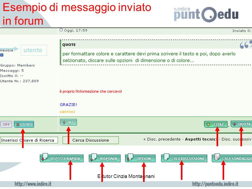 E-tutor Cinzia Montagnani Finestra dove inserire il proprio intervento