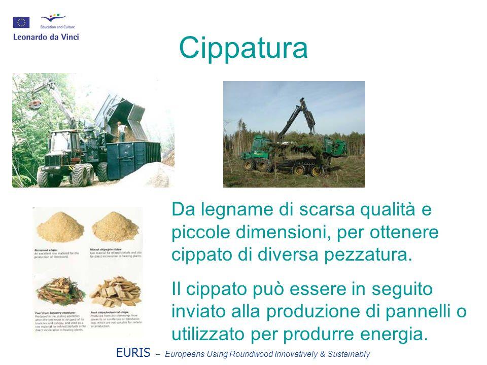 EURIS – Europeans Using Roundwood Innovatively & Sustainably Cippatura Da legname di scarsa qualità e piccole dimensioni, per ottenere cippato di diversa pezzatura.
