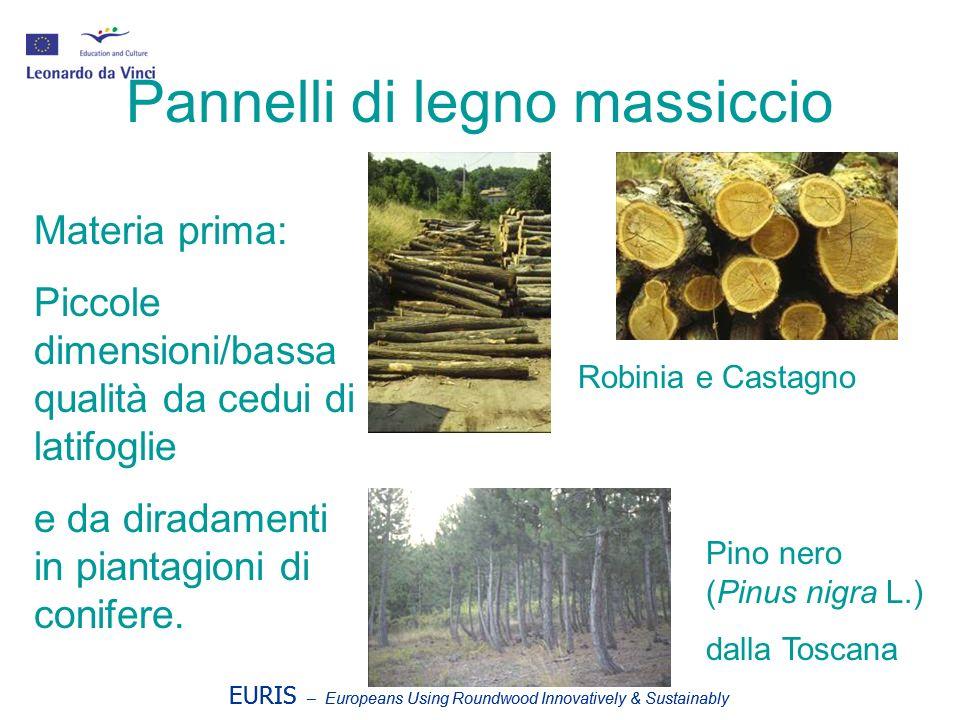 EURIS – Europeans Using Roundwood Innovatively & Sustainably Pannelli di legno massiccio Materia prima: Piccole dimensioni/bassa qualità da cedui di latifoglie e da diradamenti in piantagioni di conifere.