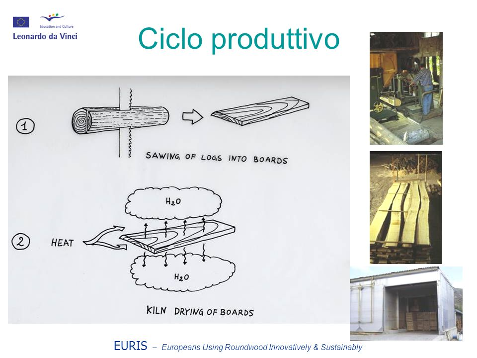 EURIS – Europeans Using Roundwood Innovatively & Sustainably Ciclo produttivo