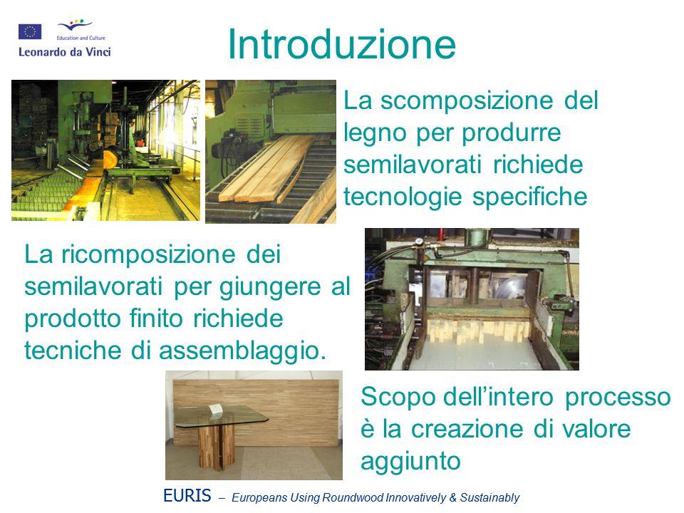 EURIS – Europeans Using Roundwood Innovatively & Sustainably Tecniche di prima lavorazione del legno 1.Segagione 2.Sfogliatura 3.Tranciatura 4.Spacco 5.Cippatura 12 3 45 EURIS – Europeans Using Roundwood Innovatively & Sustainably