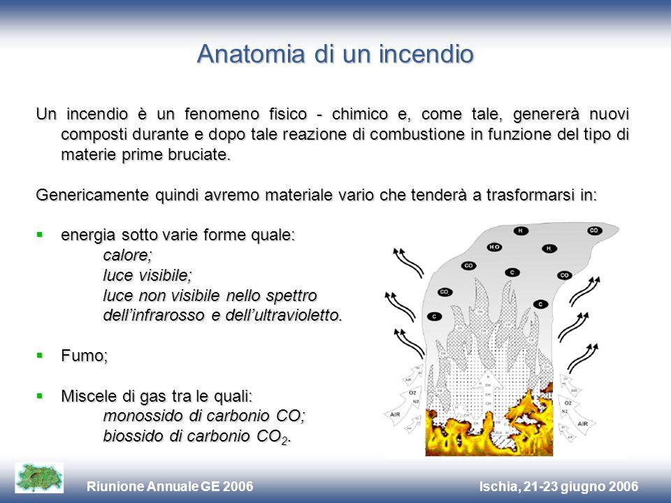Ischia, 21-23 giugno 2006Riunione Annuale GE 2006 Anatomia di un incendio Un incendio è un fenomeno fisico - chimico e, come tale, genererà nuovi composti durante e dopo tale reazione di combustione in funzione del tipo di materie prime bruciate.