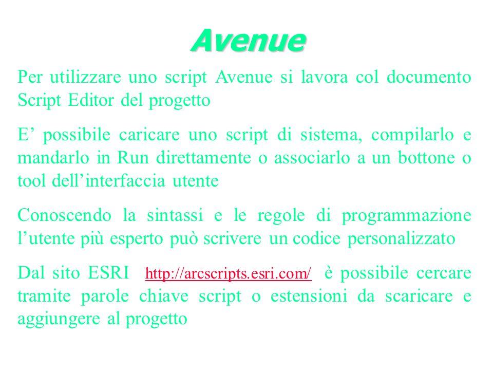 Per utilizzare uno script Avenue si lavora col documento Script Editor del progetto E possibile caricare uno script di sistema, compilarlo e mandarlo in Run direttamente o associarlo a un bottone o tool dellinterfaccia utente Conoscendo la sintassi e le regole di programmazione lutente più esperto può scrivere un codice personalizzato Dal sito ESRI http://arcscripts.esri.com/ è possibile cercare tramite parole chiave script o estensioni da scaricare e aggiungere al progetto http://arcscripts.esri.com/ Avenue