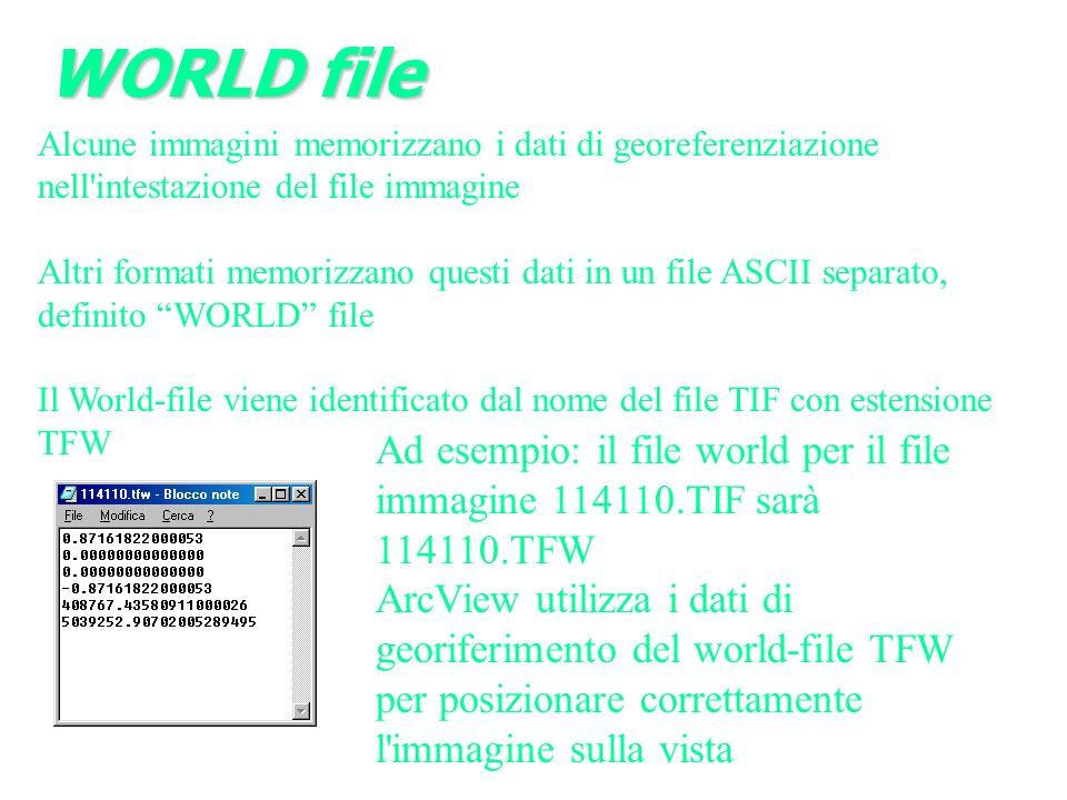Alcune immagini memorizzano i dati di georeferenziazione nell intestazione del file immagine Altri formati memorizzano questi dati in un file ASCII separato, definito WORLD file Il World-file viene identificato dal nome del file TIF con estensione TFW Ad esempio: il file world per il file immagine 114110.TIF sarà 114110.TFW ArcView utilizza i dati di georiferimento del world-file TFW per posizionare correttamente l immagine sulla vista WORLD file