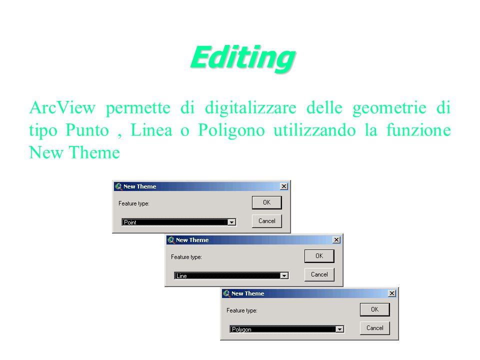 ArcView permette di digitalizzare delle geometrie di tipo Punto, Linea o Poligono utilizzando la funzione New Theme Editing