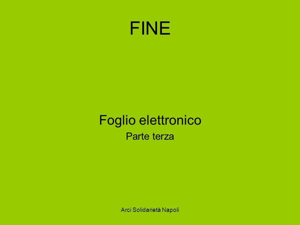 Arci Solidarietà Napoli FINE Foglio elettronico Parte terza