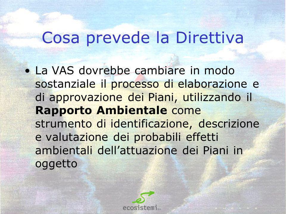 Cosa prevede la Direttiva La VAS dovrebbe cambiare in modo sostanziale il processo di elaborazione e di approvazione dei Piani, utilizzando il Rapporto Ambientale come strumento di identificazione, descrizione e valutazione dei probabili effetti ambientali dellattuazione dei Piani in oggetto