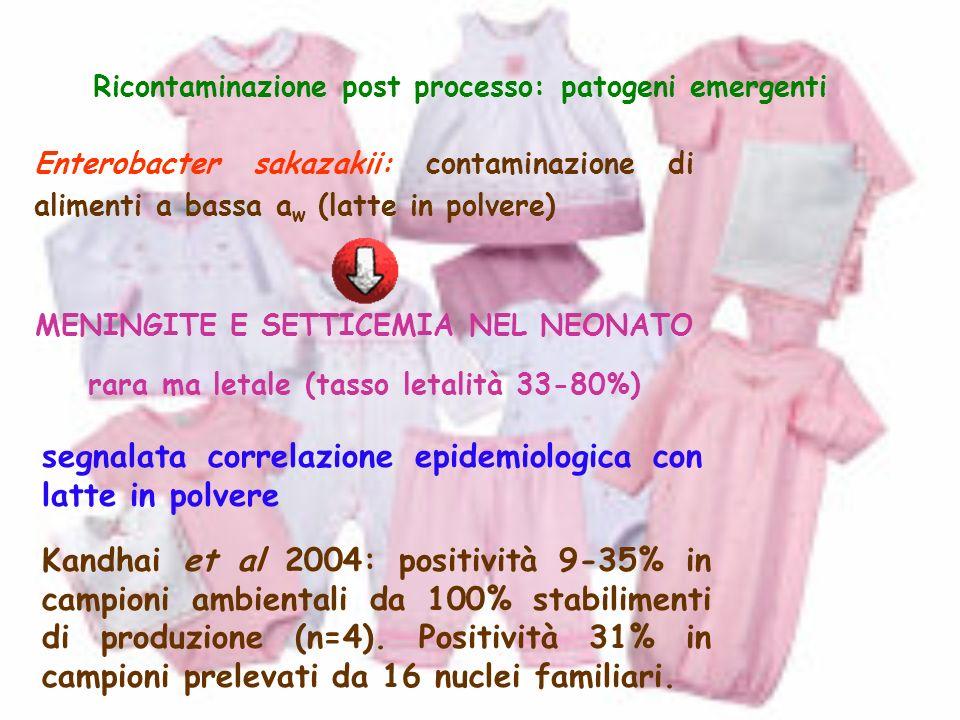 Ricontaminazione post processo: patogeni emergenti Enterobacter sakazakii: contaminazione di alimenti a bassa a w (latte in polvere) MENINGITE E SETTI