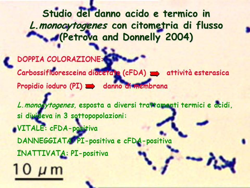 Studio del danno acido e termico in L.monocytogenes con citometria di flusso (Petrova and Donnelly 2004) DOPPIA COLORAZIONE: Carbossifluoresceina diac