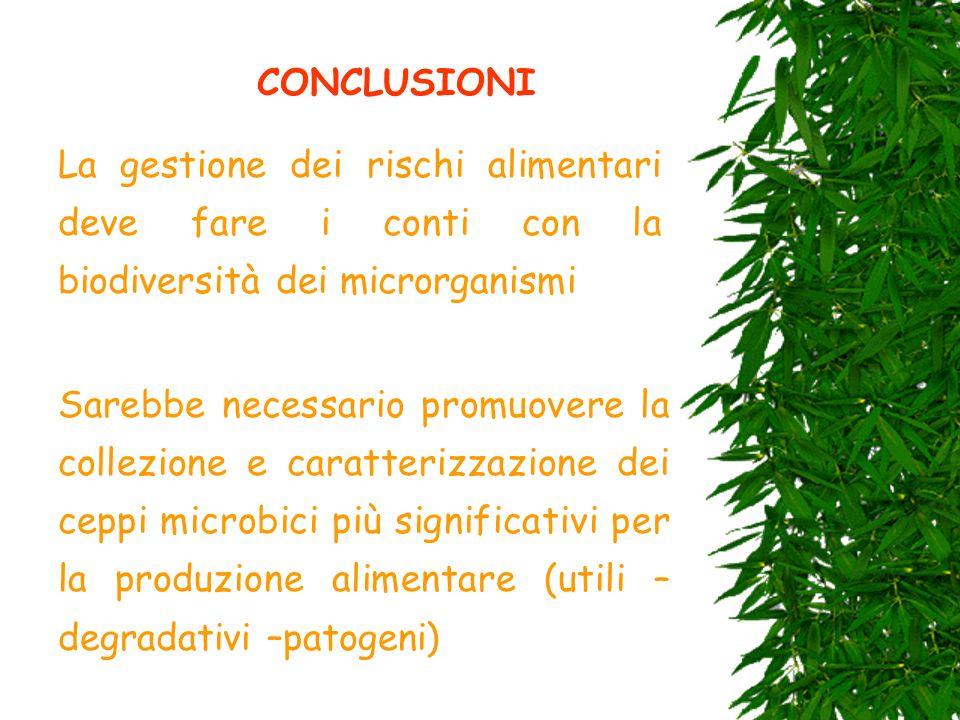 CONCLUSIONI La gestione dei rischi alimentari deve fare i conti con la biodiversità dei microrganismi Sarebbe necessario promuovere la collezione e ca