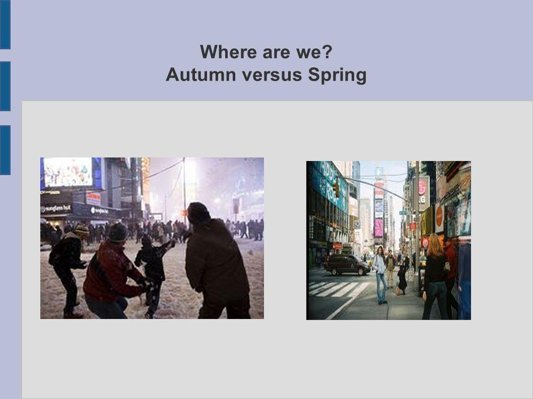 ESEMPIO: cambiare setting Unaltra attività da proporre agli studenti potrebbe essere quella di descrivere unimmagine e i suoi cambiamenti (per esempio come appare Times Square in inverno e come viene vista a primavera).
