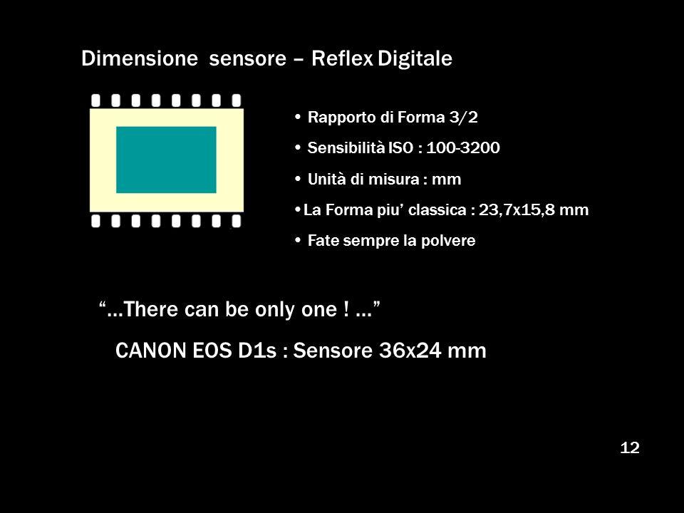 12 Dimensione sensore – Reflex Digitale Rapporto di Forma 3/2 Sensibilità ISO : 100-3200 Unità di misura : mm La Forma piu classica : 23,7x15,8 mm Fat
