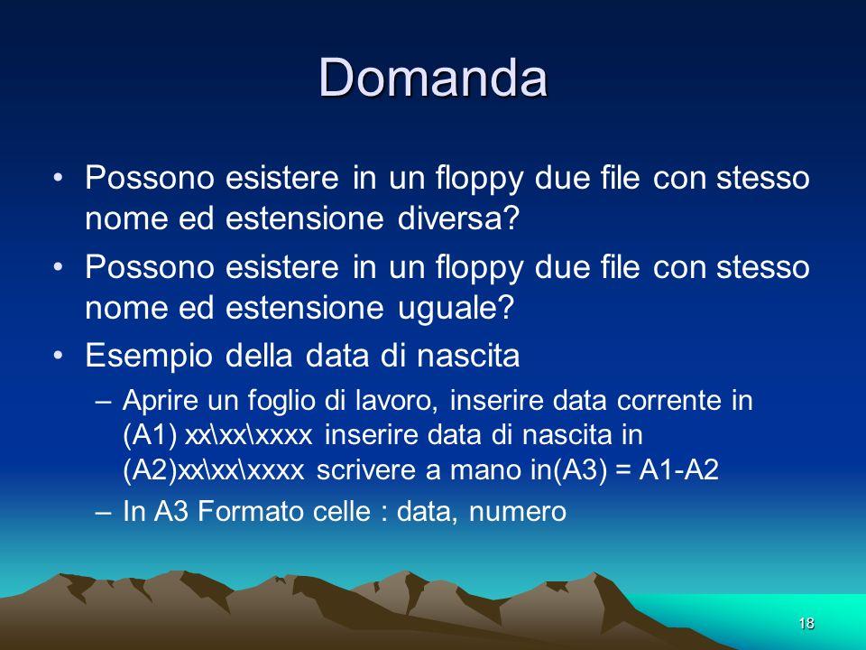 18 Domanda Possono esistere in un floppy due file con stesso nome ed estensione diversa.