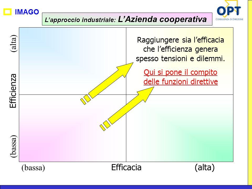 IMAGO (bassa) Efficacia(alta) (bassa) Efficienza (alta) Raggiungere sia lefficacia che lefficienza genera spesso tensioni e dilemmi. Qui si pone il co