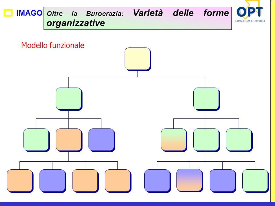 IMAGO Oltre la Burocrazia: Varietà delle forme organizzative Modello funzionale