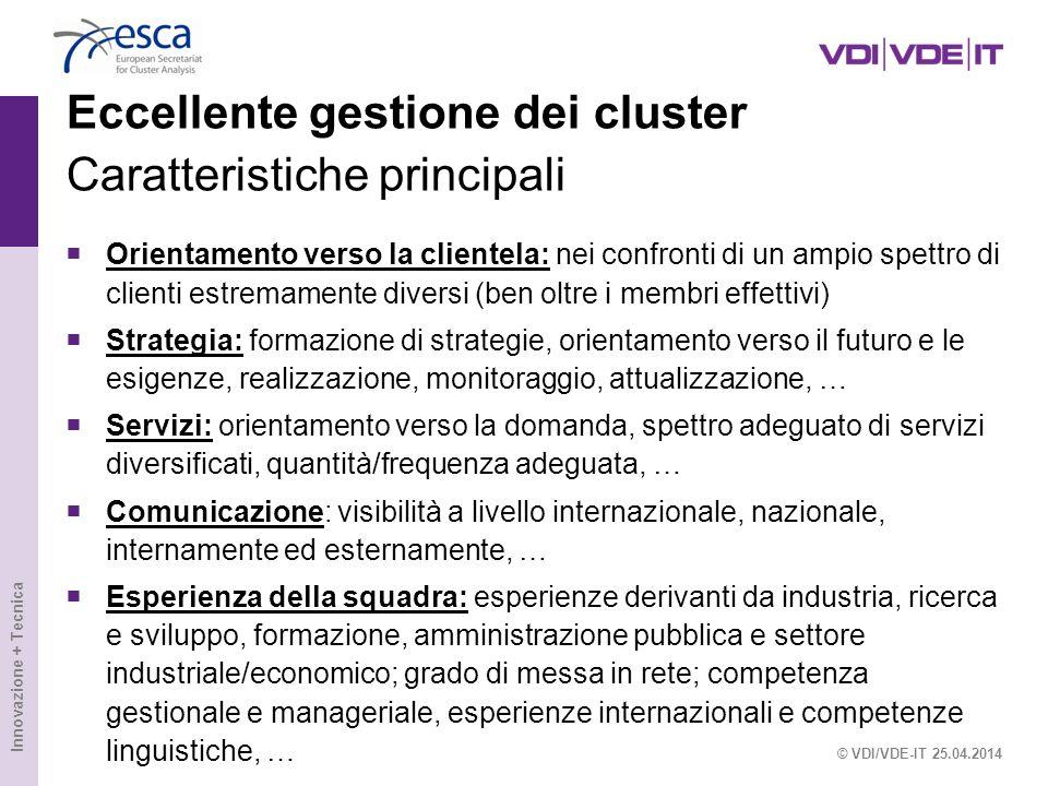 Innovazione + Tecnica Eccellente gestione dei cluster Caratteristiche principali Orientamento verso la clientela: nei confronti di un ampio spettro di